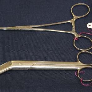 [Scissors and forceps belonging to Ada J. Ross.]