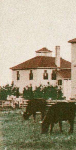 Maternity Hospital, 1885. HSC Archives/Museum HSAM16