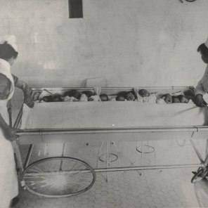 Nursery on Maternity Floor, Winnipeg General Hospital, babies in trolley being taken to their mothers for feeding, ca. 1914. HSC Archives/Museum 999.4.18
