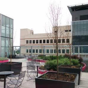 Construction of new HSC Women's Hospital, Garden terrace, 2018. HSC Communications